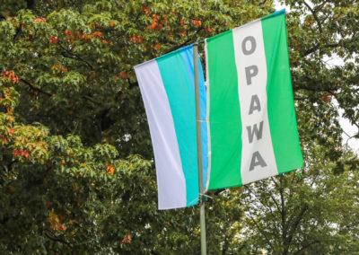 opawa-3169