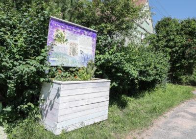 baldwinowice-0382