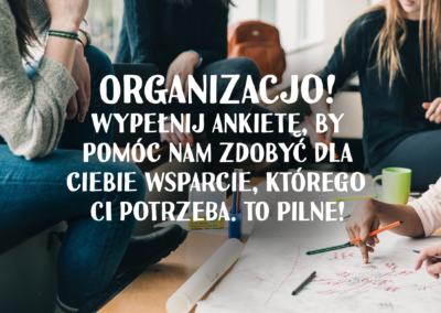 Ankieta_grafika kopia